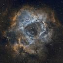 Rosette nebula,                                Antanas Paulauskas