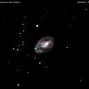 ngc4242 galassia nei cani venatici                                              distanza 18 milioni  A.L.,                                Carlo Colombo
