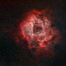 Starless Rosette Nebula,                                JDJ