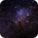 Melotte 15, in the middle of the heart,                                Lazze