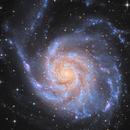 Messier 101,                                astrodan