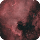 NGC 7000 North America nebula,                                  Roswell Astronomy