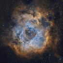 Rosette Nebula in Multiple Wavelengths,                    Casey Good