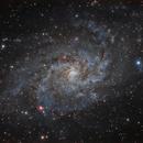 M33 The Triangulum Galaxy,                                  Elmiko