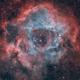 Rosette nebula SHO and RGB mkII,                                Luigi