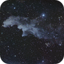 Rigel and the Witch Head Nebula (IC 2118),                                HR_Maurer