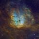 TadPoles Nebula (IC410) wide field in SHOrgb,                                Jose Carballada