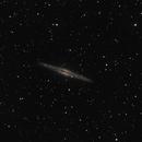 NGC 891 - C8,                                Hartmuth Kintzel