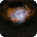 M8. The Lagoon nebula,                                Gary Plummer