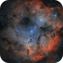 IC1396 Cepheus,                                Boo Kuu