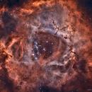 Nebulosa Roseta,                                Juan B. Torre Valle
