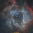 Rosette Nebula HOO palette,                                jprejean