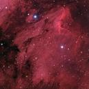 The Pelican Nebula (IC5070),                                Sebastiano Recupero