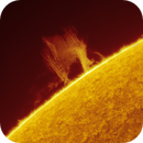 Quiescent prominence - 01.06.2020,                                Łukasz Sujka