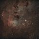 IC410 - Ha(sG)OIII + RGB stars - Nebula & Tadpoles,                                Roberto Botero