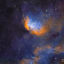 The Tulip Nebula,                                Everett Quebral