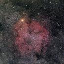 IC 1396,                                AC1000