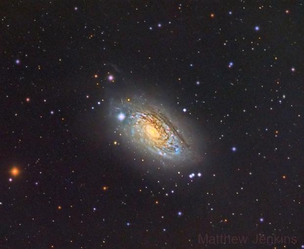 Sunflower Galaxy,                                Matt Jenkins