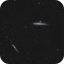 Whale and Hockey Stick - NGC4631, NGC4656 and friends - LRHaGB,                                Roberto Botero