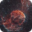 IC 443, Jellyfish Nebula,                                John Sim