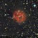 Cocon Nebula in Cygnus,                                Francois Theriault