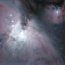 M42 - fine detail,                                  Günther Eder