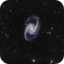 NGC 1365 - The Great Barred Spiral Galaxy,                                Casey Good