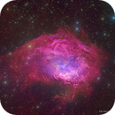 Lower's Nebula - The Walking Fish Nebula - SH2-261,                                Eric Coles (coles44)