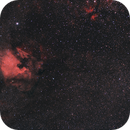 Cygnus region and NGC7000 local Ha,                                Vega