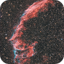 Ngc 6995 Veil Nebel,                                Alexander Grasel