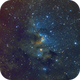 The Cave Nebula in SHO,                                Chris Fellows