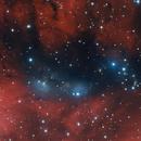 NGC 6914 - vdb131-132,                                Gary Imm