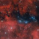 NGC 6914 - Cygnus Reflection Nebulae Region,                    Gary Imm