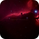 Horsehead shot in HaRGB (Orion RGB & Baader HA),                                Vincent Lupo