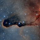 IC 1396 - Elephant's Trunk Nebula,                                Murat SANA
