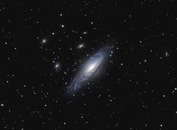 Deer Lick Group - NGC 7331,                                Chad Adrian