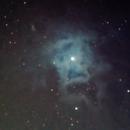 NGC7023 2014 Iris nebula,                                antares47110815