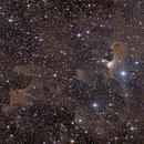 Ghost Nebula vdB141,                                AstroEdy