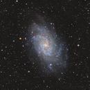 M33,                                Marian