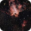 M17 - Swan Nebula,                                Bob Stewart