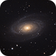Messier 81,                                Franco Tognarini