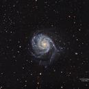 M101 collaboration,                                Göran Nilsson