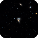 NGC 4567 and NGC 4568 The Butterfly Galaxies,                                Sean McCully