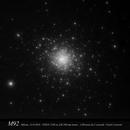 M92,                                CHERUBINO