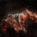 NGC 6992 - The Bat in the Eastern Veil,                                Timothy Martin & Nic Patridge