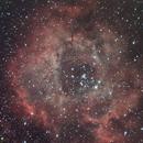 Rosette nebula,                                Tom's Pics