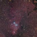 HA-LRGB from NGC2264,                                  Marcus Wögerer