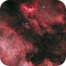 NGC7000 and IC5070 -The North American and Pelican Nebula,                                Henrique Silva