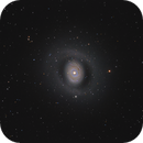 Messier 94,                                Anthony Quintile