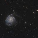 M101 Pinwheel Galaxy,                                Frank Iwaszkiewicz